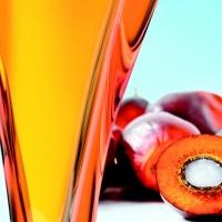 Palmový olej Surový a rafinovaný olej z palmových jadier, olej pre bionaftu